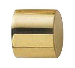 Terminal Polished brass plug